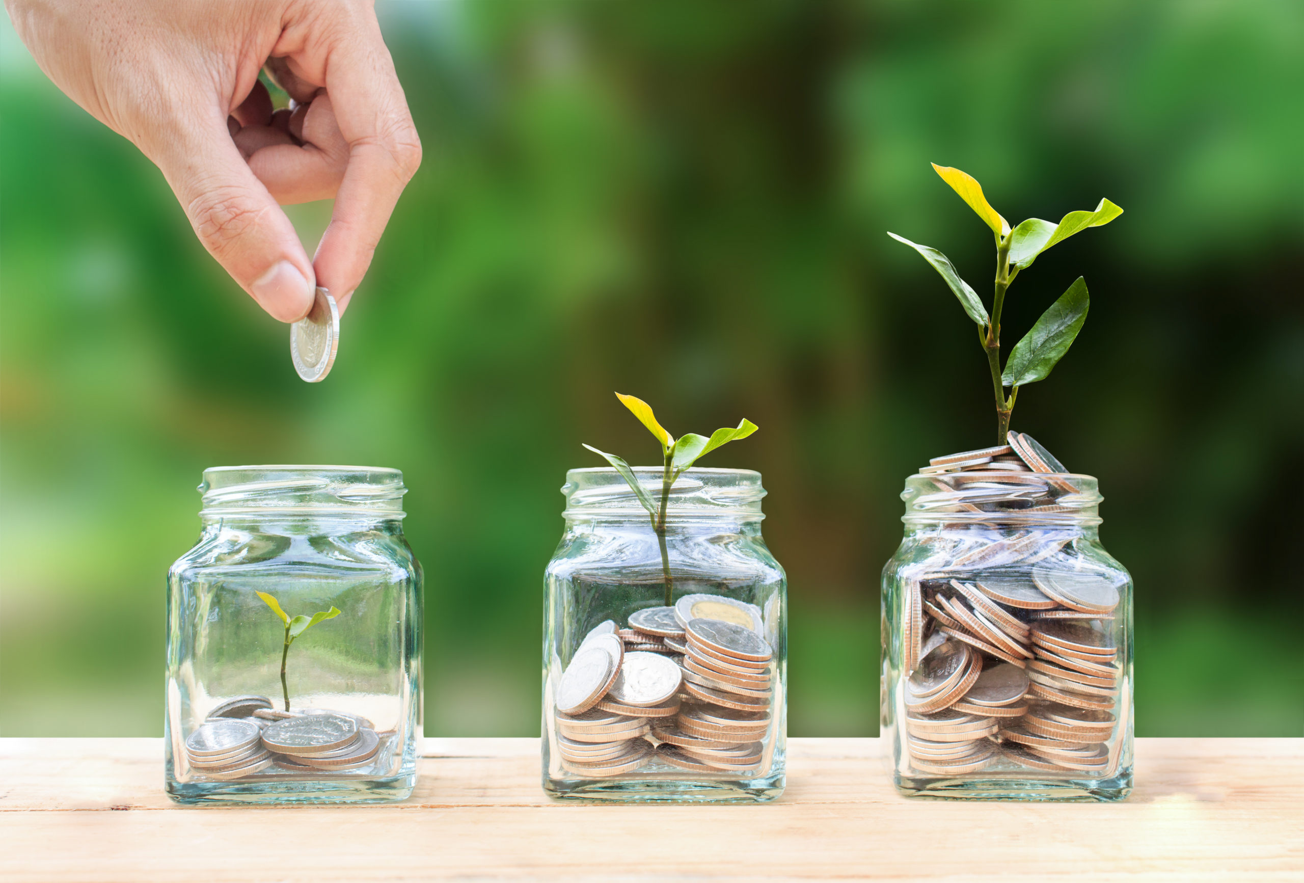 A man hand holding coin over stacked coins in glass jar and growing tree plant